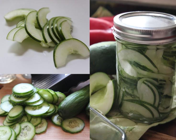 Cucumber loving